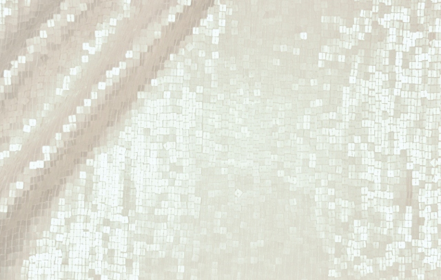 Embroidered Sequined Silk Chiffon Georgette Fabric I-175 White